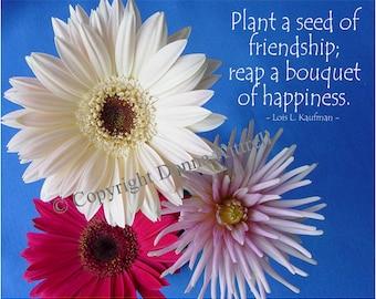 Poster Friendship & Flowers 11x14 Original Photograph