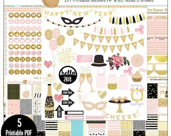Planner Kit! Pink Gold 2018 New Year Printable DIY Planner Kit 5 PDFs, EC or Happy Planer Goals & Year in Review Boxes