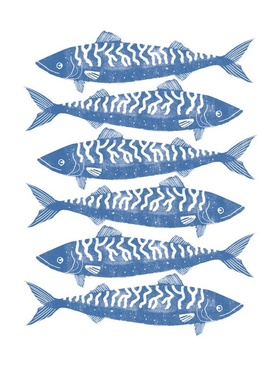 Blue Mackerel 2017  - Signed print