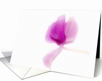 Orchid fine art photo greeting card, floral fine art, floral photography.