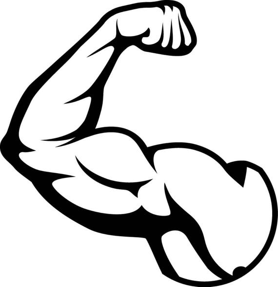 bicep muscles fit weightlifting bodybuilding fitness workout rh etsy com free clipart muscles muscle arm clipart