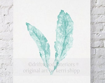 Sea Fan Wall Art Watercolor Print in Pale Green 8 x 10 - Sea Life Wall Art - Coral Art Prints - Green Sea Fan Print - Sea Fan in Woodlawn