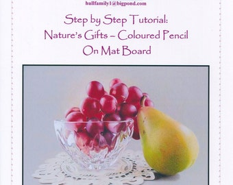 Step by Step Art Tutorial - Natures Gifts in Coloured Pencil on Mat Board