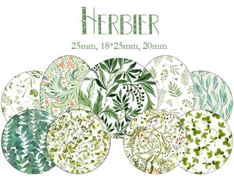 """Cabochons collage sheet / digital """"Herbarium, leaves, trees, green"""" round"""