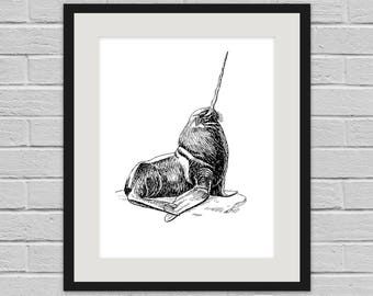 Narwhalrus - Weird Wildlife Wall Art Poster and Canvas Print