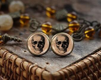 Skull stud earrings, Anatomical Skeleton Skull earrings, gothic skull jewelry, Human Skull earrings, Human Anatomy, Medical earrings