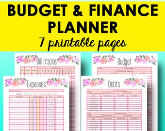 Monthly Budget Planner Book, Finance Planner Worksheets, Personal Budget Printable, Financial Planning Printables, Letter, Instant Download