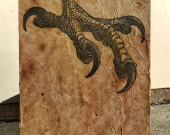 Talon Illustration Wall Art