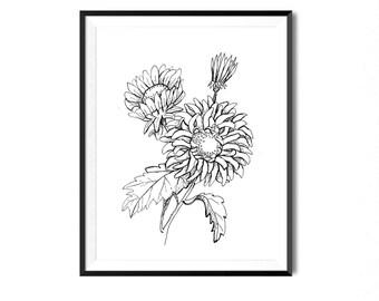 Aster Flower Print, Botanical Illustration, Wall Art, Flower Art Print, Floral Art, Botanical Print, Black and White Flower Print, Flora Art