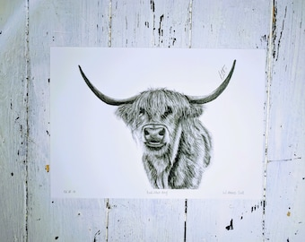 Highland Cow wall art | Picture | Animal print | Archival print | Original pencil drawing | Framed Print | Also available as print