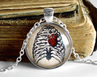 Anatomical Heart Necklace - Antique Anatomy Print Pendant in Silver - Ribs - Rib Cage