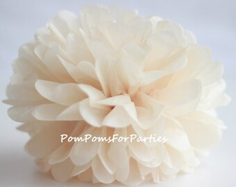 1 High Quality CHAMPAGNE Tissue Pom Pom - Choose any of 50 colours - Hanging  Paper flower - Tissue paper balls - Tissue paper pom poms