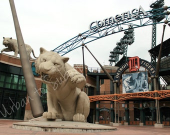 Detroit Tigers, Comerica Park, Michigan, Travel, Wall Art, Photographic Print