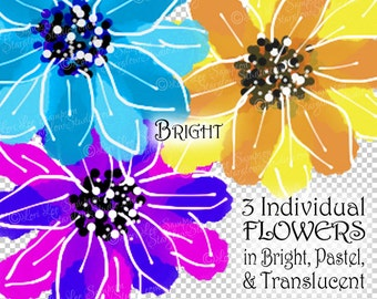 Clipart Flowers | Daisy | Summer Flowers Digital Download | iPad Mini Flower Paintings | PNG Daisies, Magenta, Blue, Yellow, Scrapbooking