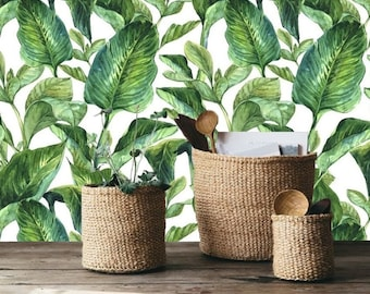 self adhesive wallpaper, removable wallpaper, tropical wall decor, botanical,jungle wallcovering, exotic leaves, banana leaf, peel&stick,#41