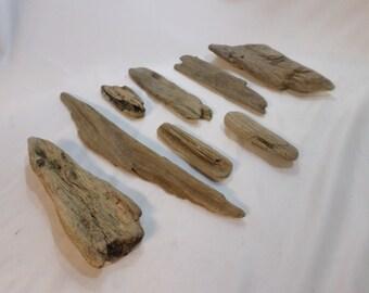 Bulk Driftwood Collection - Driftwood Pieces - 8 Unique Pieces