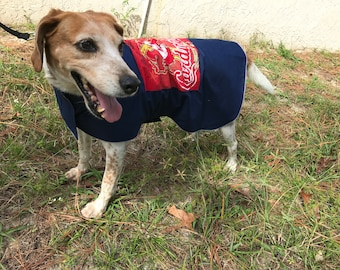 St Louis dog shirt-coat