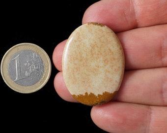 Beautiful unique khaki picture jasper oval cabochon (EA1516)