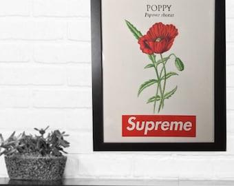 Supreme poppy box logo print, wall art, hypebeast