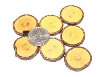 Wood buttons,Tecoma tree