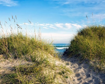 Beach Decor, Nature Canvas or Print, Sea Photography, Ocean Waves, Path, Dunes, Sea Grass, Coastal Art, Nautical Photo - Afternoon in Avon