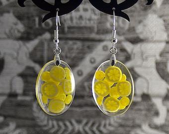 Earrings with lemon slices in Epoxy Resin - Lemon jewelry - Handmade jewelry - Danle earrings with lemon - Lemon earrings