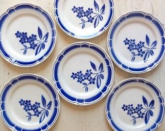 Six french plates, six french transferware plates, six flower blue white plates