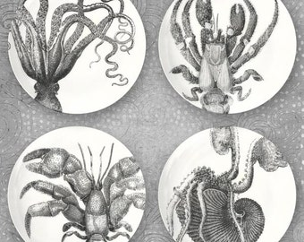 Octopuses and Crustaceans plate