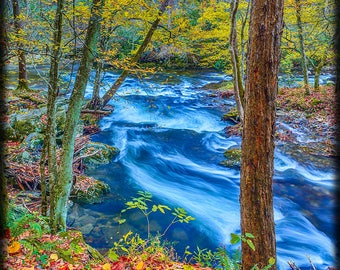 VERTICAL -- CLICK to see.  Autumn Stream in the Smokies E251. Smoky Mountains, River, Stream, Time Exposure, Blue, Red, Brown, Water, Motion