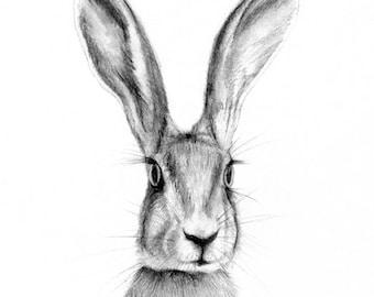 rabbit print, bunny print, rabbit art, woodland nursery, woodland baby shower, forest animal art, nursery art, nursery art print, wall art
