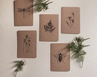 Set ansichtkaarten, Kraft, 5 stuks, Botanische pentekeningen, Natuur, Decoratie