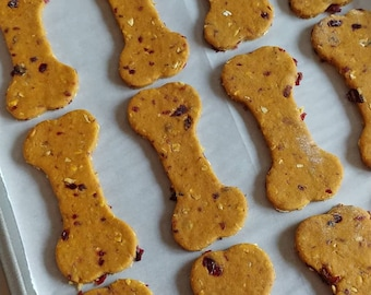 1 Lbs Pumpkin Peanut Butter with Dried Cranberries Dog Treats / All Natural Dog Treats / Homemade Dog Biscuits / Gift For Dog Lovers