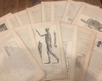 Vintage encyclopedia pages from 1897.          Wonderful illustrations on each page.   36 double-sided pages.     11 x 7.5 inches