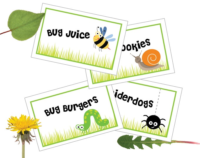Boys Bug Party - Food, Name, Tent Cards or Labels - Customized Printable DIY Place Cards - Picnic Food Tags, Bug Tent Cards