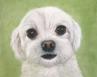 5x5 Giclee Print white dog by Rsalcedo Free Shipping FFAW