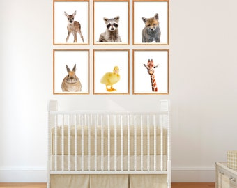 Nursery Animals, Set of 6 Prints, Baby Animal Prints, Animal Portrait Prints, Nursery Art