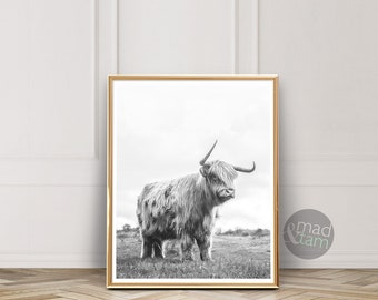 Highland Cow Print, Farm Animal Wall Art, Digital Download, Cow Poster, Cattle Photography, Animal Portrait, Black And White, Farm Nursery