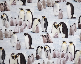 Allover Emperor Penguins on light Blue Print Pure Cotton Fabric--By the Yard