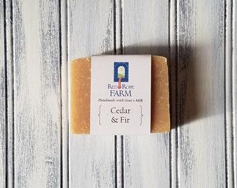 Cedar & Fir Goat's Milk Soap, Cold Process, Extra-Moisturizing, 1 bar