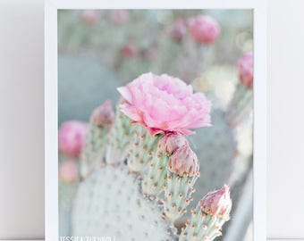 Cactus Photography Print, Pink and Mint Cactus Flower Blossom, Pastel Cactus Art, Southwestern Art, Pastel Nursery, Baby Girl Room, Desert