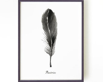 Feather watercolor painting, Black and white feather print, Ink painting, Feather illustration, Black feather art RECTRIX, Buy 2 Get 1 FREE