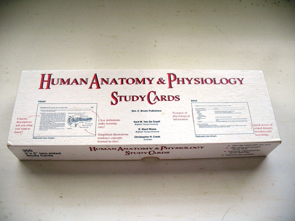 SALE Sale SALE Human Anatomy and Physiology Study Cards for ...