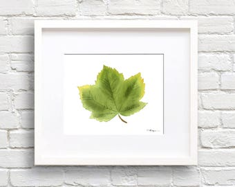 Sycamore Leaf Art Print - Nature Wall Decor - Leaves - Sycamore Tree Leaf Watercolor Painting