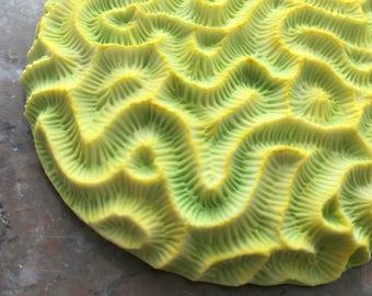 Chartreuse Runde Gehirn Korallen-Porzellan-Wand-Skulptur-Fliese