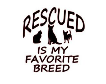 Vinyl Decal - Rescued is my favorite Breed