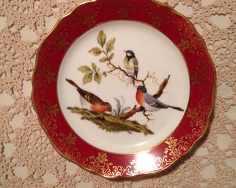 Limoges French porcelain plate