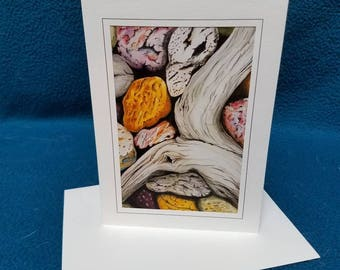 Set of 10 original art driftwood on the beach blank note cards with matching envelopes.