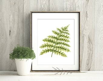 Fern Watercolor Art Print, Woodland Fern Poster, Green Fern Painting, Fern Forest Decor, Botanical Wall Art, Nature Leaves Print W11