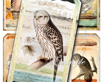 SOMETIMES OWLS label tags jewelry for animal lovers - Digital collage sheet instant download printable - birds collage for scrapbook - tl125