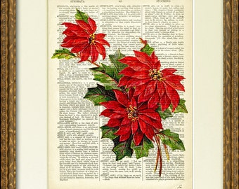 Dictionary Page Print - CHRISTMAS POINSETTIA - a lovely old flower illustration on an antique dictionary page- charming Christmas wall decor